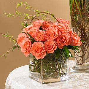 orange roses in a square vase